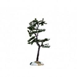 Marcescent Tree, Small Cod. 64087