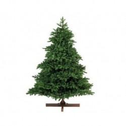 Albero di Natale Albertha Spruce 180 cm