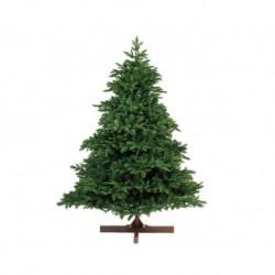 Albero di Natale Albertha Spruce 210 cm