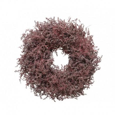 Ghirlanda di Asparagi Rosso 60 cm