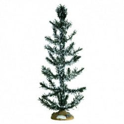 White Pine, Large Cod. 74262