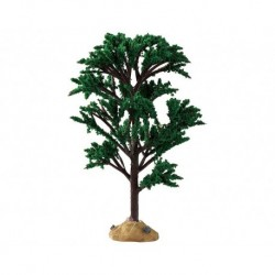 Green Elm Tree Cod. 94541