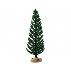 Green Juniper Tree Cod. 94547