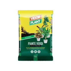 Terriccio per Pinte Verdi 10 litri Vigorplant