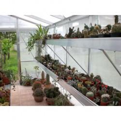 Bancale di coltivazione per Serra Professionale