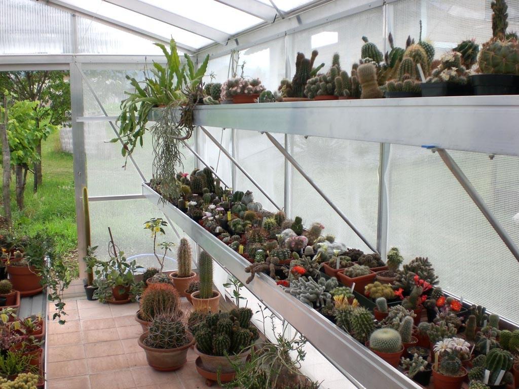 Bancale di coltivazione per serra professionale for Accessori per laghetti da giardino
