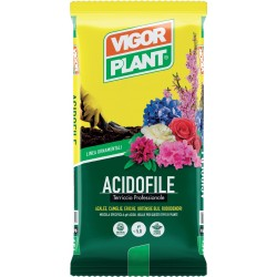 Terriccio Acidofile 45 litri Vigorplant