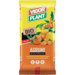 Terriccio Agrumi 20 litri Vigorplant