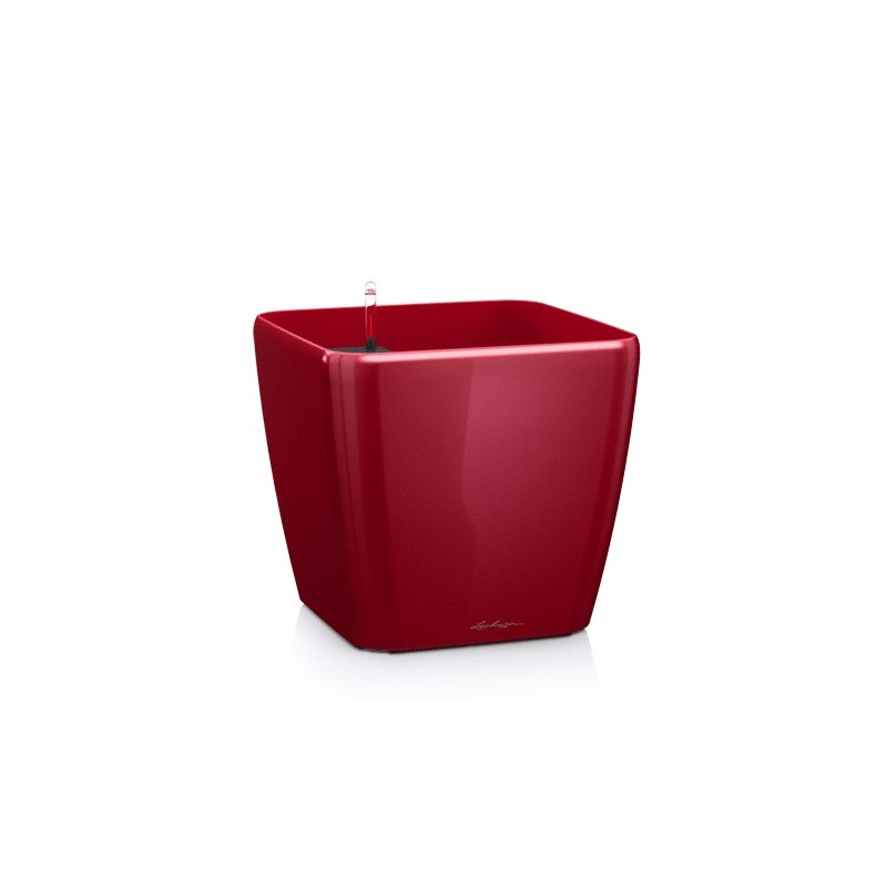 Lechuza Set Completo Vaso Classico Premium 28 Colore Antracite Metal