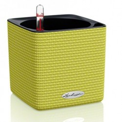 Vaso Cube Color 14 Lechuza Set Completo