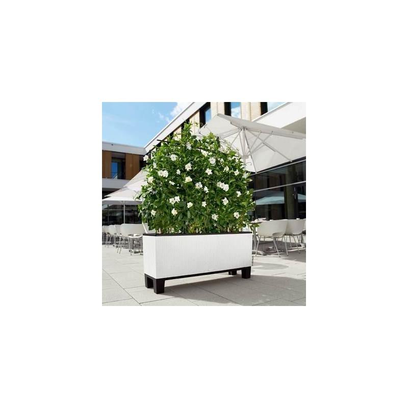 base con piedi per fioriera trio 40 lechuza. Black Bedroom Furniture Sets. Home Design Ideas