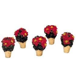 Poinsettias Set Of 5 Cod. 34970