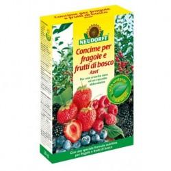 Concime granulare Azet fragole e frutti di bosco 2,5 kg. Neudorff