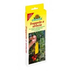 Trappole per insetti volatili nocivi (confezione fa 7 strisce) Neudorff