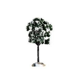 Balsam Fir Tree Small Cod. 64089