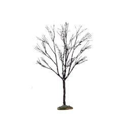 Butternut Tree Small Cod. 64097
