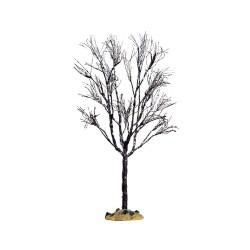 Butternut Tree Large Cod. 64098