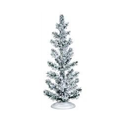 White Pine Large Cod. 44792