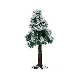 Winter Redwood Tree Cod. 34652