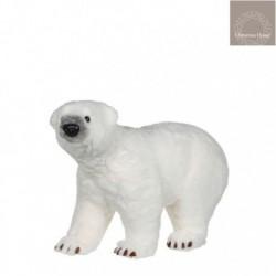 Orso Bianco a quattro zampe