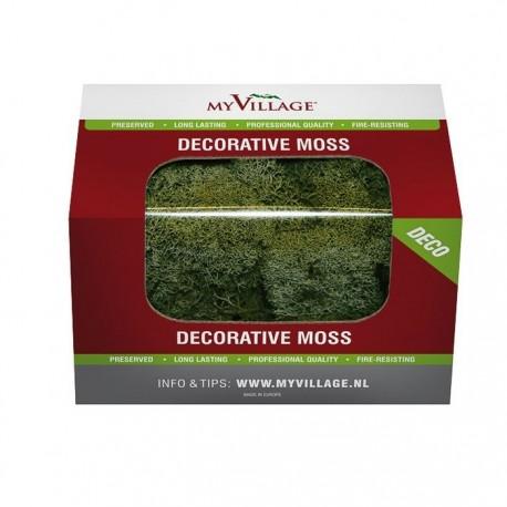 Muschio Lichene Verde Scuro 50 gr