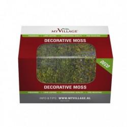 Muschio Verde 50 gr