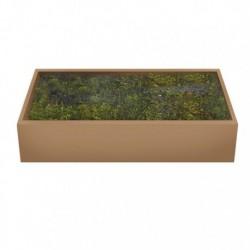Muschio Verde 500 gr