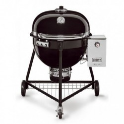Barbecue a Carbone Summit Charcoal Grill Weber Cod. 18301004