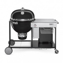 Barbecue a Carbone Summit Charcoal Grilling Center Weber Cod. 18501004