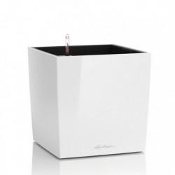 Vaso Cube 30 Lechuza Set Completo