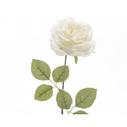 Rosa a Stelo Dim. 11x11x45 cm