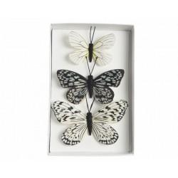 Farfalle Model 1 Dim. 7x9 cm 10x7 cm 12x8 cm Set di 3