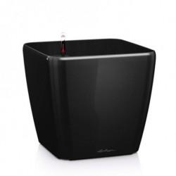 Lechuza Quadro Premium 43 All-in-One Set