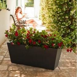 Senigallia Flower Box
