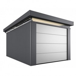 Depandance CASANOVA 3x5 con Porta Sezionale da Soffitto Biohort